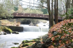 Riverwalk Tour @ Tumwater Falls Park | Tumwater | Washington | United States