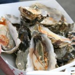 Oysters in boat
