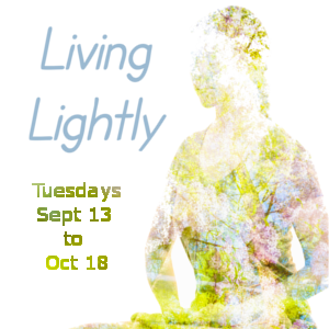 Meditation Workshop: Living Lightly @ Tushita Kadampa Buddhist Center | Olympia | Washington | United States