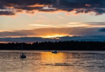 sunset Olympia Washington