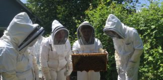 The Evergreen State College Beekeeping Learning