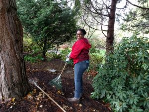 Yashiro Japanese Garden Volunteer Work Party @ Yashiro Japanese Garden | Olympia | Washington | United States