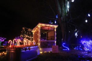 olympia holiday lights