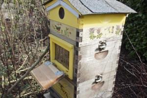 olympia beekeeping