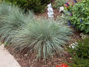 Olympia Garden Design