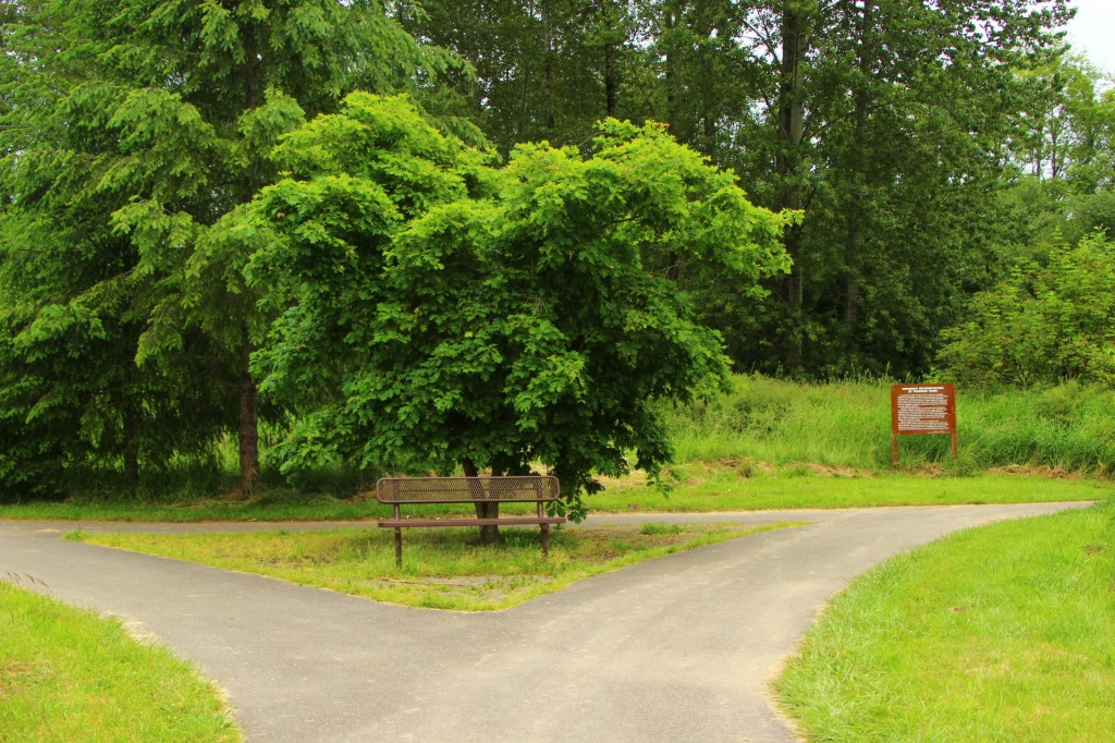 Pioneer Park Tumwater Washington Thurstontalk