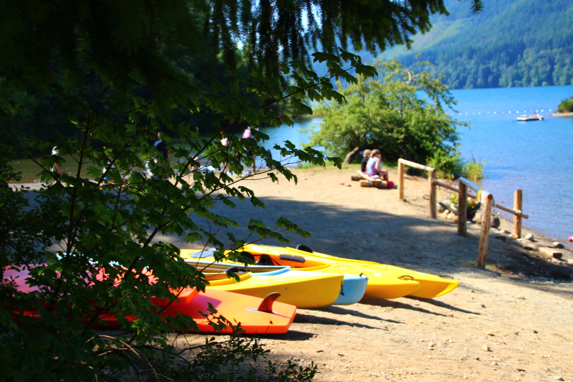 Visit Lake Cushman On The Olympic Peninsula Thurstontalk