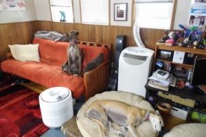 olympia houseboats