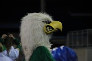 Senior quarterback, Jayden Croft, is appreciative of the fan support for the Tumwater football team.