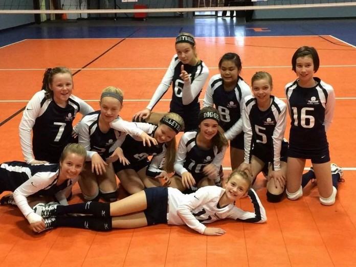 olympia youth volleyball