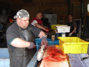 More than 640 volunteers assisted Shorb last year with his food bank.