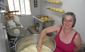 olympia cheese producer