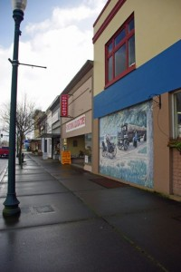 elma variety store