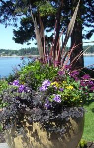 planter box gardening