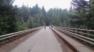 high steel bridge shelton