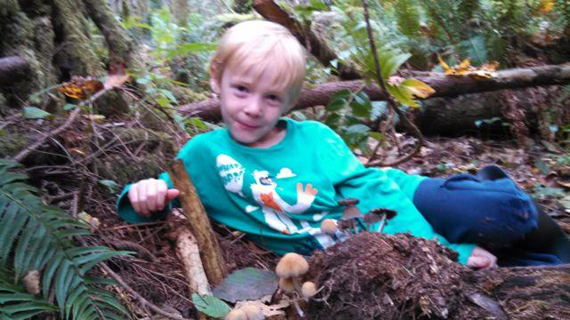 mushroom hunting