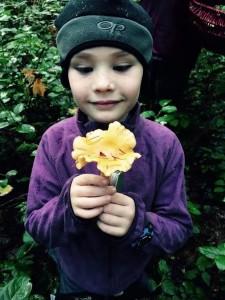 mushroom hunting with kids