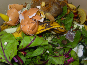 olympia food composting
