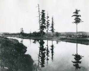 The site of the Medicine Creek Treaty