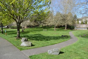 Residents in the established Rob Rice community of Jackson Farms enjoy a lush picnic and walking area.