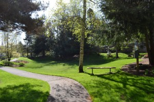 Many of Rob Rice Communities mature to be park like, a great place for a morning walk.