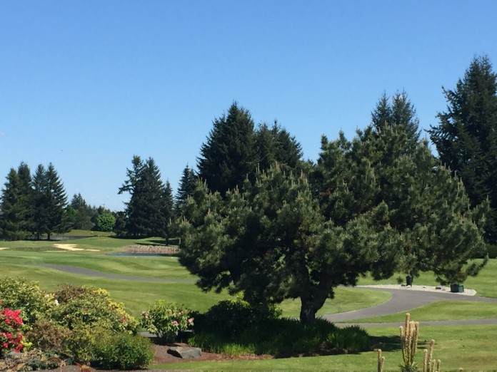 olympia golf course