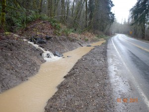 thurston county storm water