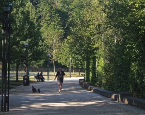capitol lake trail