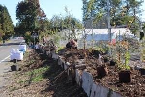 eastside urban farm
