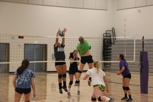 north thurston volleyball