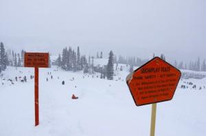 paradise sledding