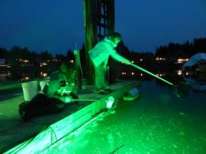 pier peer boston harbor