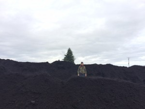 Seed farmer Forrest Edelman stands amid the recently delivered compost. Photo credit: Jessika Blackport