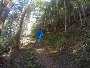trail running olympia