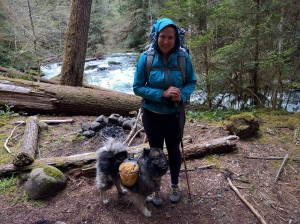 backpacking with dog