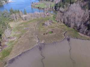 Capitol Land Trust will acquire two adjacent parcels that are near North Thurston schools and Olympia and Lacey. Photo credit: Justin Robert