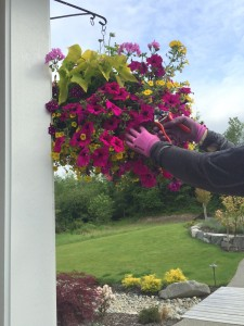 Change your task, and posture, every 20 minutes. Try a job standing upright, such as dead-heading the hanging baskets.