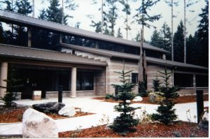 lacey library