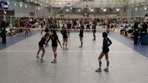 oly reign volleyball
