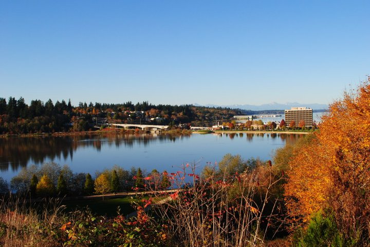 fall colors olympia