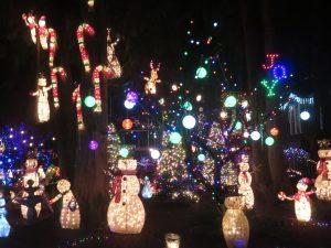 holiday lights olympia