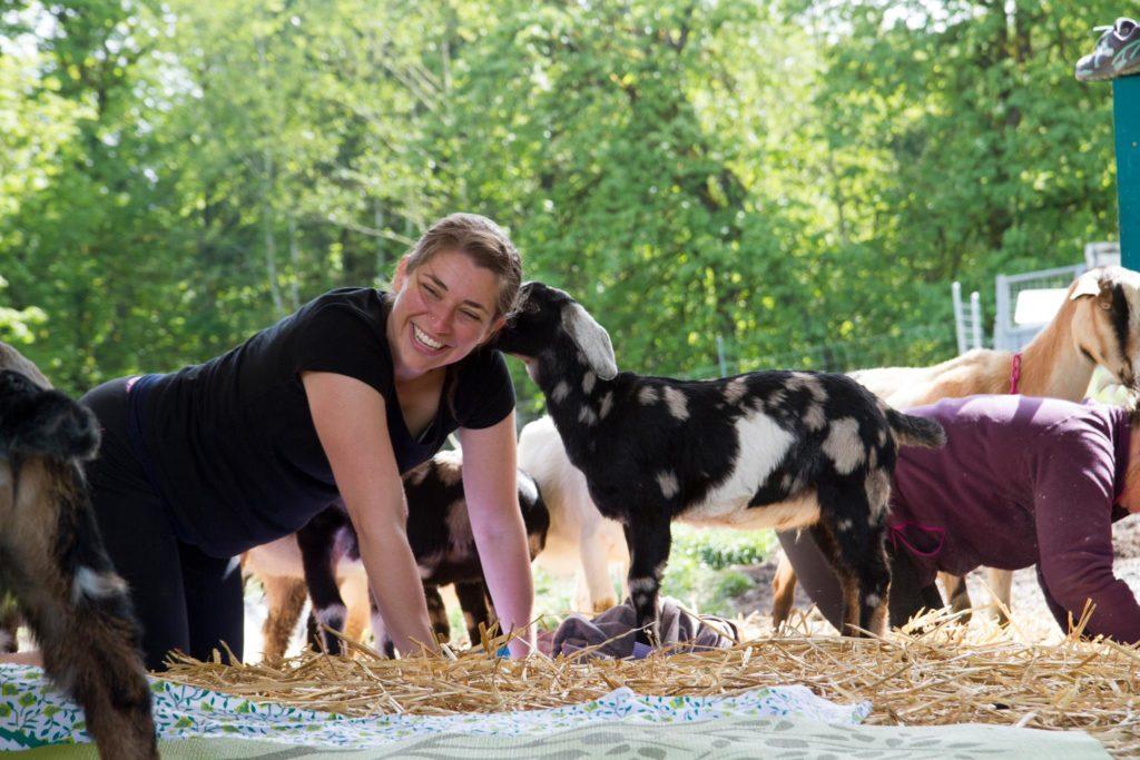 Goat Yoga Olympia