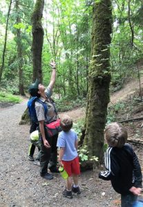 Sequoia's Treehouse Summer Camp