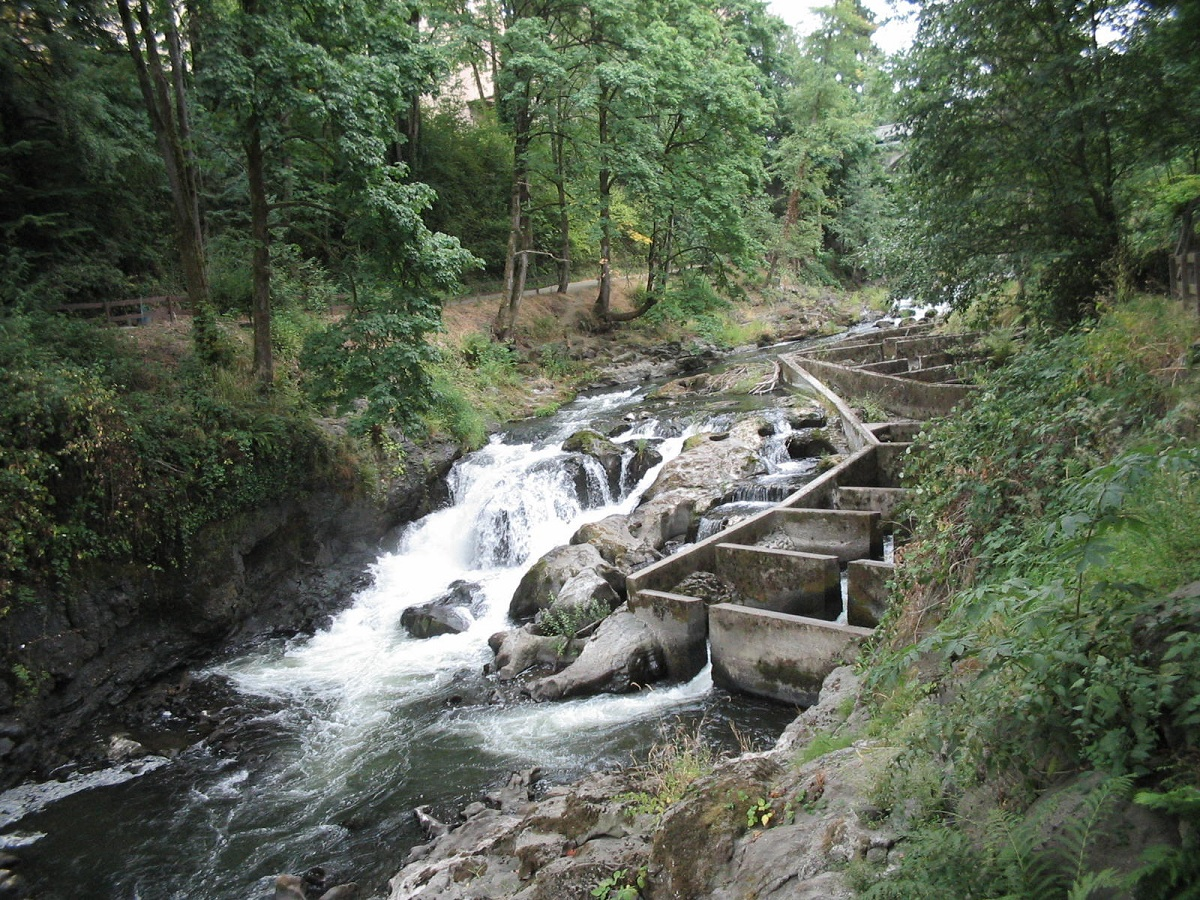 salmon tumwater falls