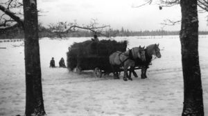 Nelson Ranch history, Tenino