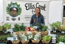 ellis creek farm