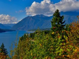 lake cushman overlook
