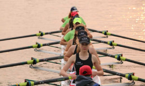 olympia area rowing