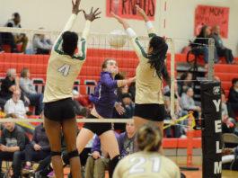 north thurston volleyball