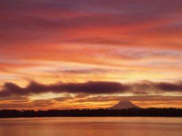 sunrise olympia, wa